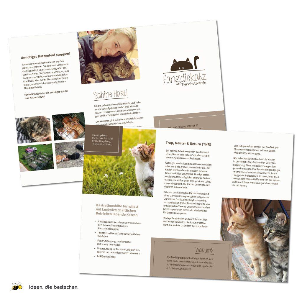 Referenzen kreativbiene: Folder für den Tierschutzverein fangdiekatz