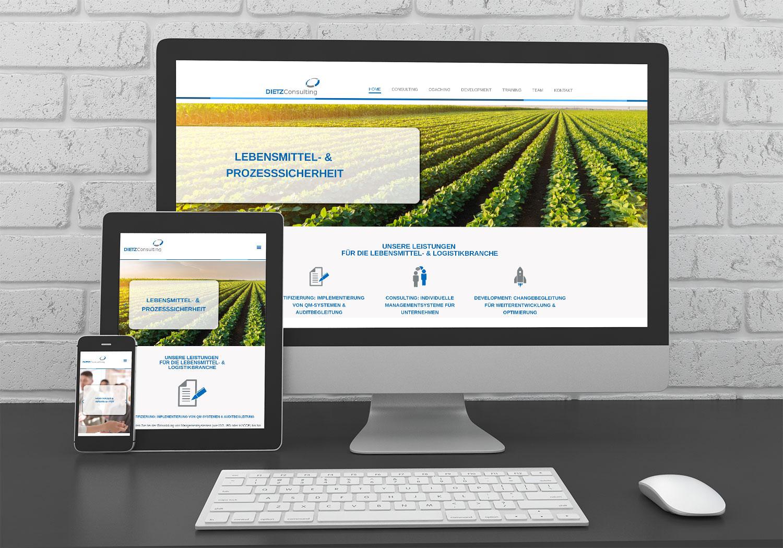 Referenzen kreativbiene: Webdesign DIETZ Consulting